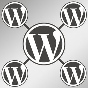 What is WordPress Multisite?